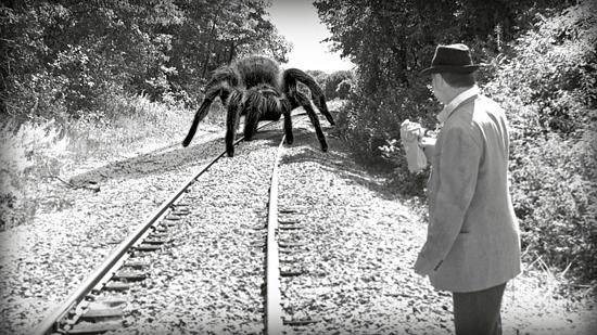 giant-spider02