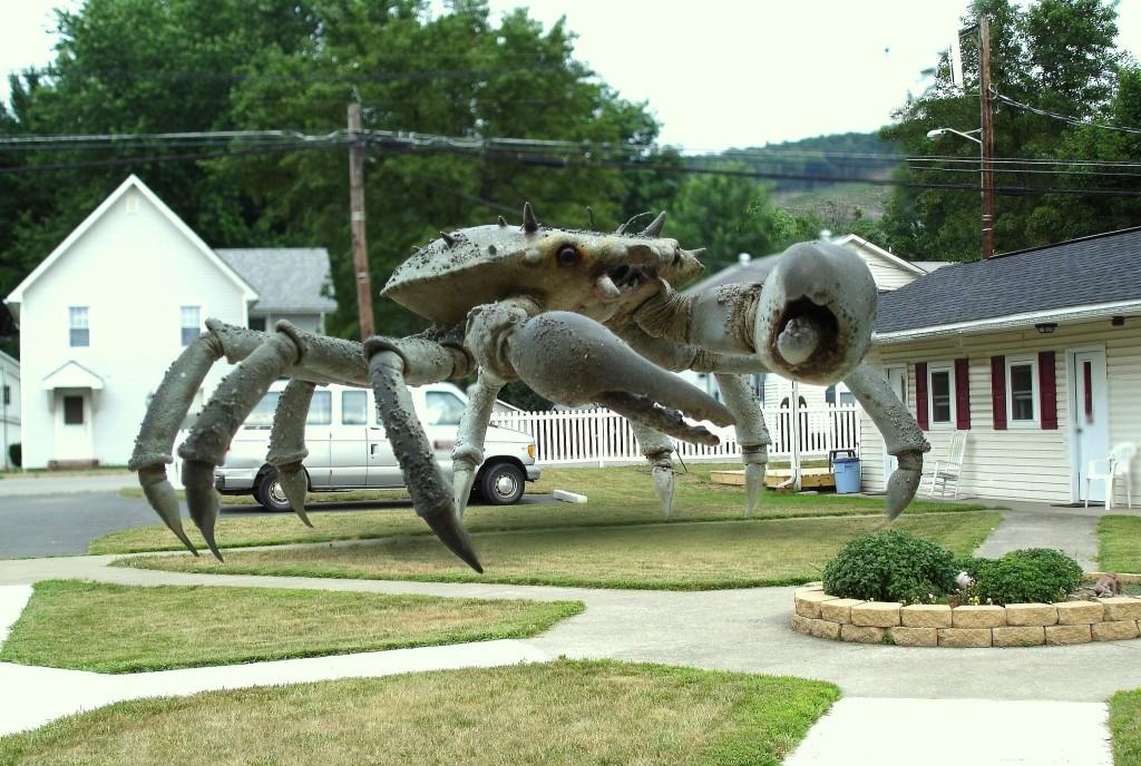 queen-crab11